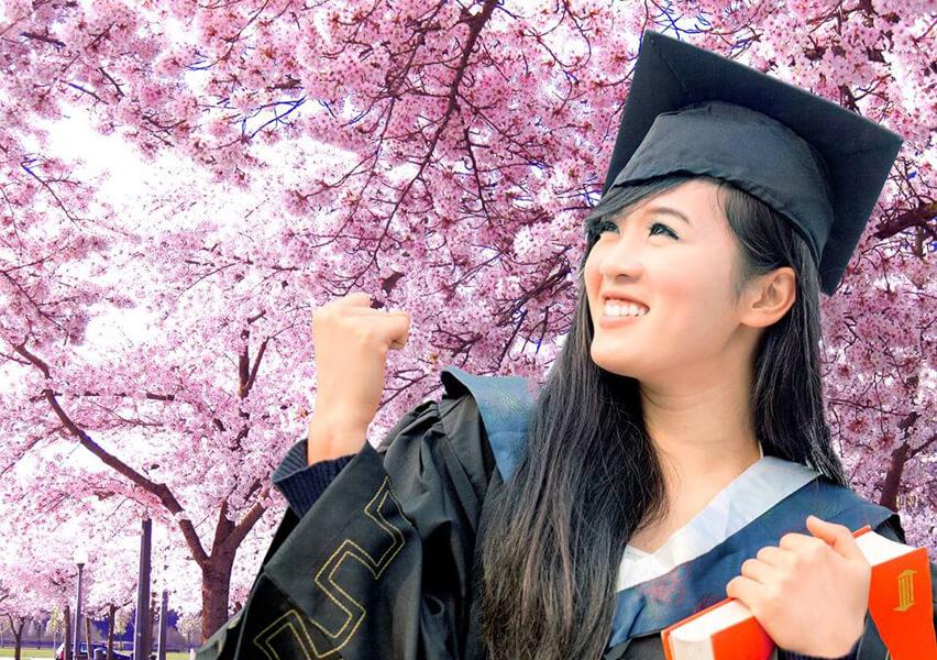 Dịch vụ tư vấn du học Nhật Bản uy tín